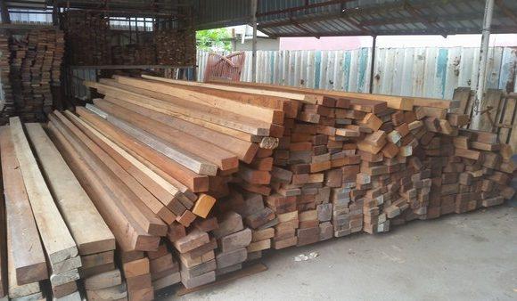 Timber Trader